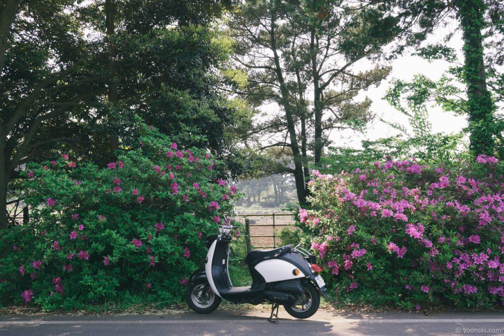 Jeju, Korea, 20140502-2