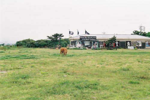 Jeju, Korea, 20140504-2