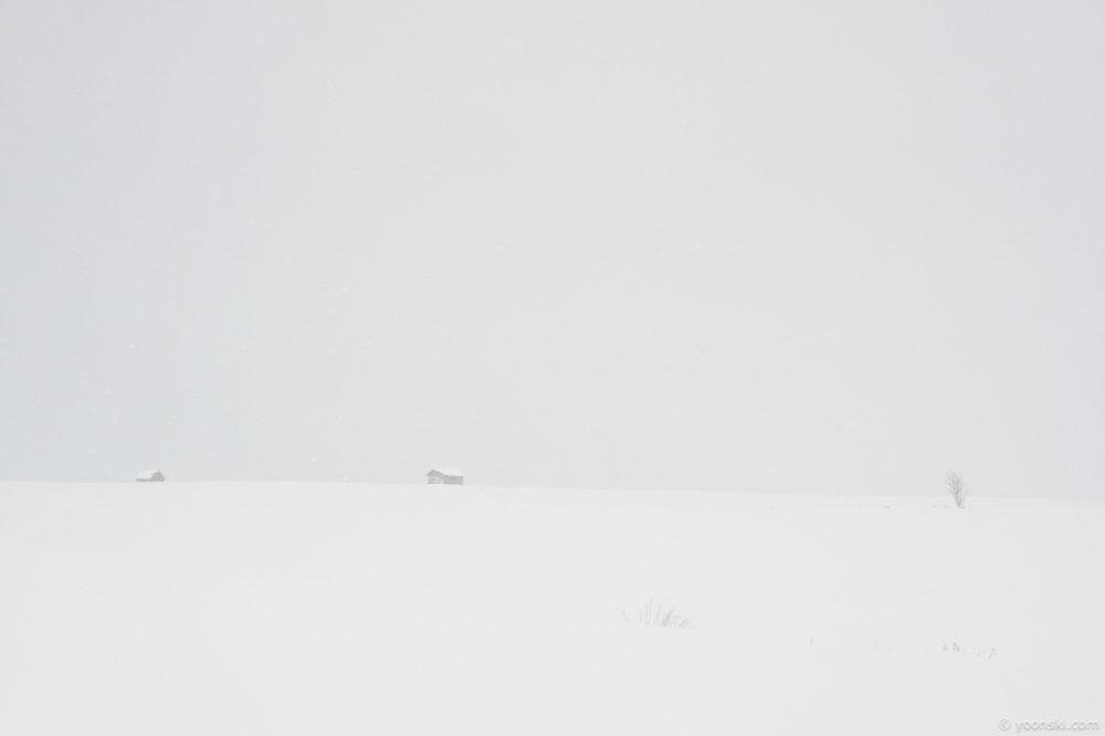 Biei, Sapporo, Japan, 20140102-2