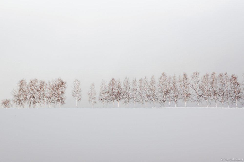 Biei, Sapporo, Japan, 20140102-4