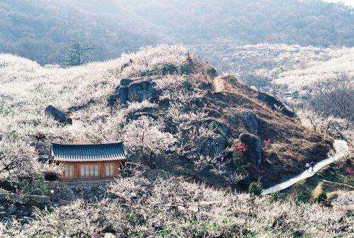 Gwangyang, Korea, 20140322-1
