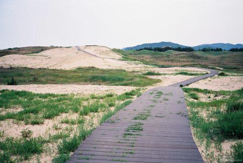 Taean, Korea, 20140607-1