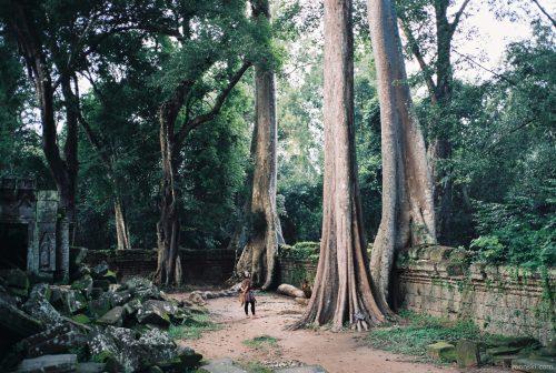 Siem Reap, Cambodia, 20141009-4
