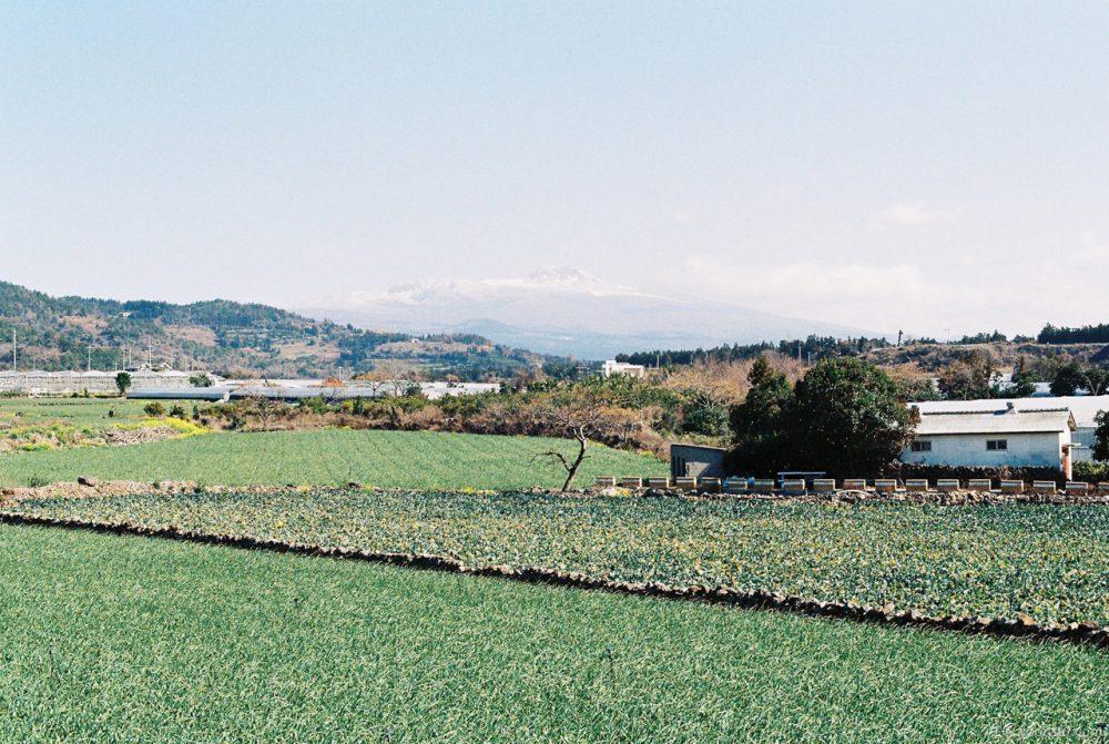 Jeju, Korea, 20150219-1